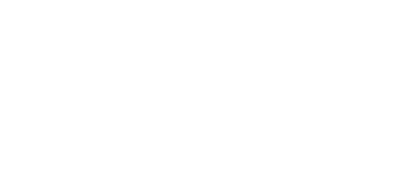 ef-zin-logo-blanc